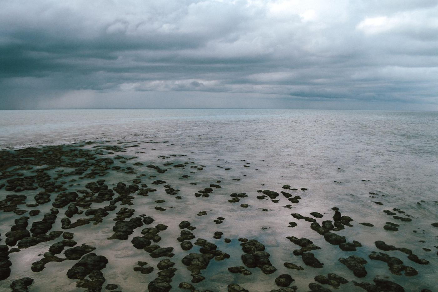 aus-stromatolites-02-wp