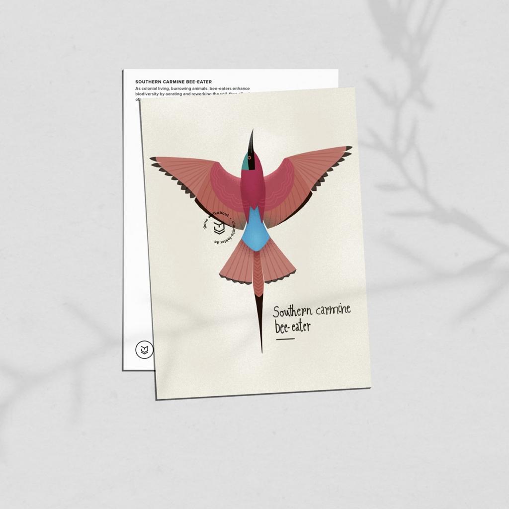 gw-shop-postcard-carmine-beeeater-02