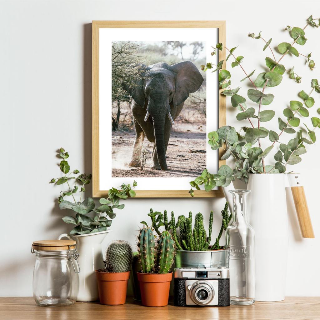 gw-shop-fineart-elephant-03