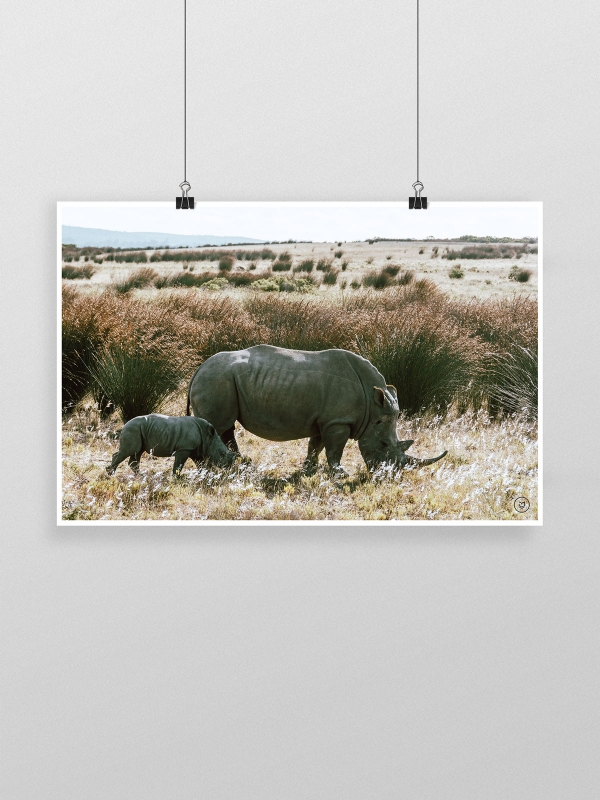 gw-shop-fineart-rhino-family-01