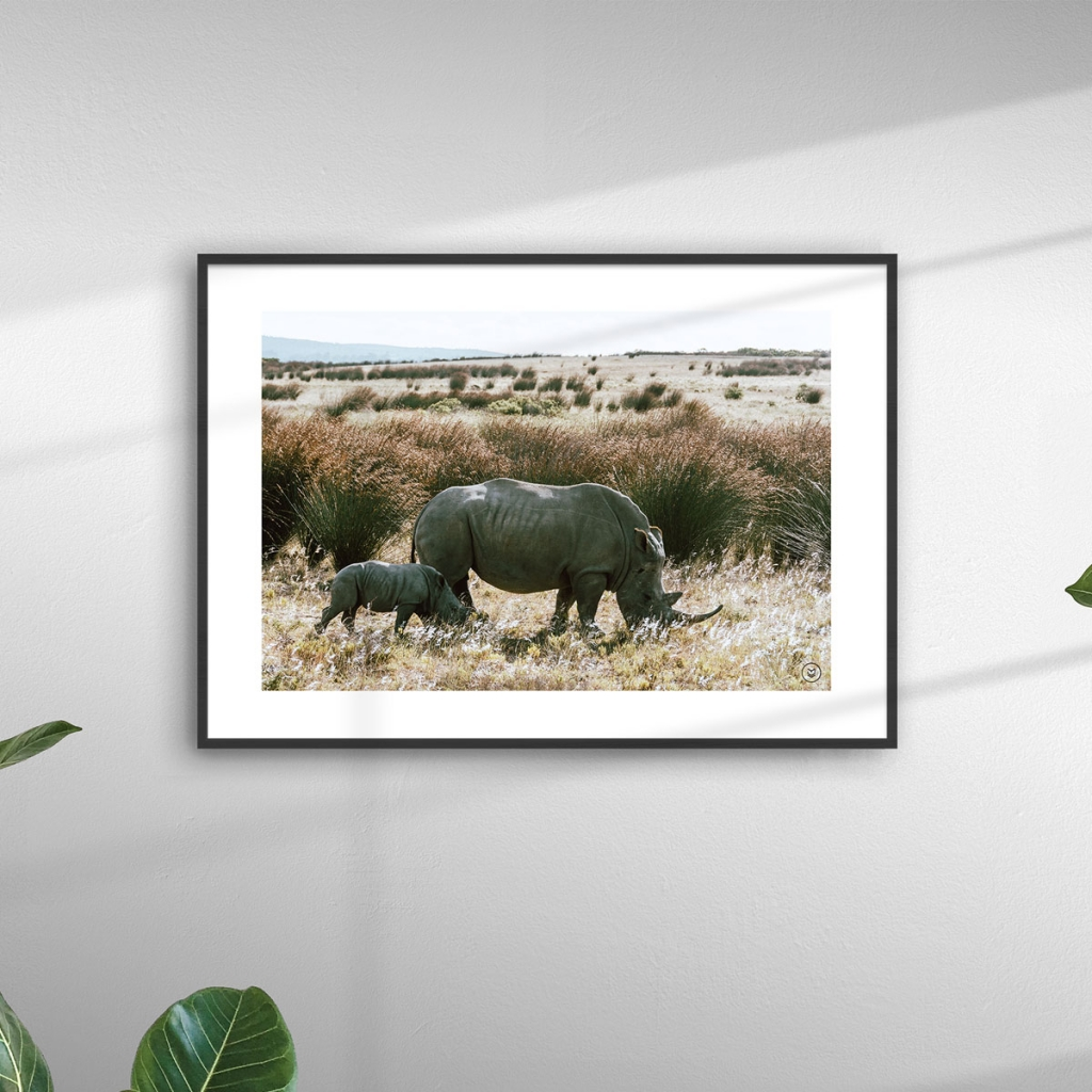 gw-shop-fineart-rhino-family-02