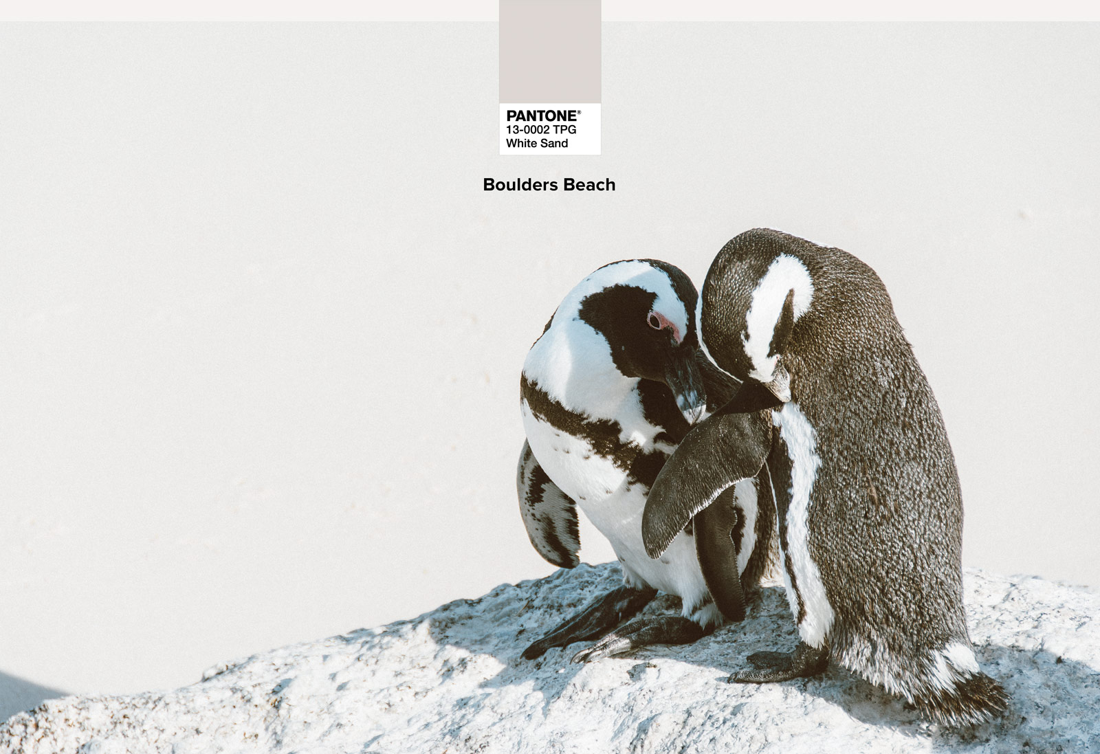 sa-kapstadt-boulders-beach-01-wp