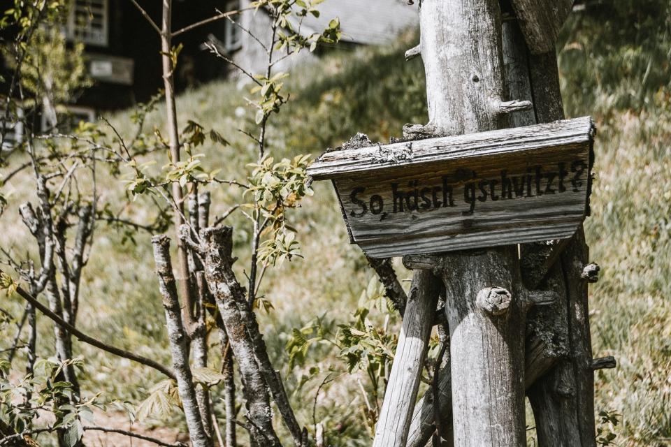 d-wandern-schwarzwald-wildbachtour-waeldersteig-33