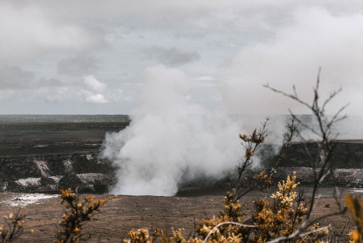 usa-hawaii-forest-trails-01-wp