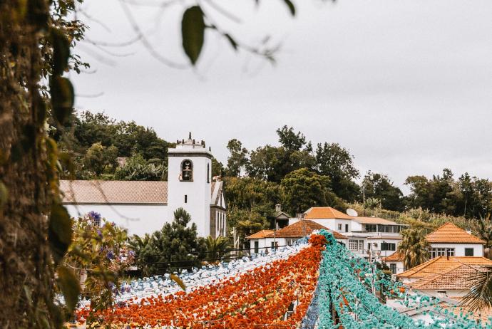 Madeira – Papierblüten und süßer Wein